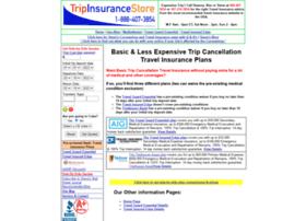 basictravelinsurance.com