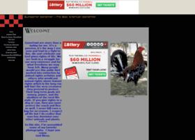 Battlehorse.tripod.com