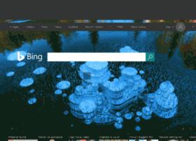 bing.net