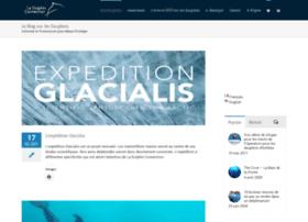 blog-les-dauphins.com