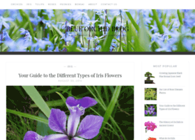 blueorchidblog.com