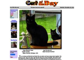 catoftheday.com