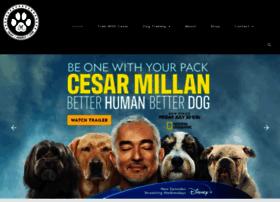 cesarsway.com