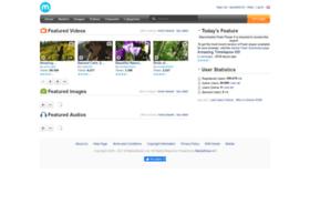 demo.mediasharesuite.com