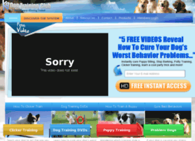 dog-training-online.info