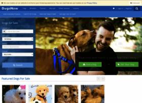 dogsnow.com