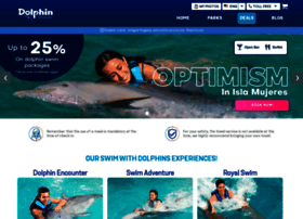 dolphindiscovery.com