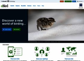 ebird.org