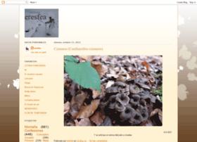 eresfea.blogspot.com