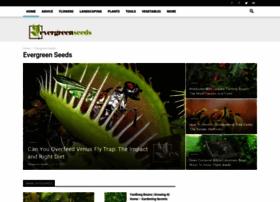 evergreenseeds.com