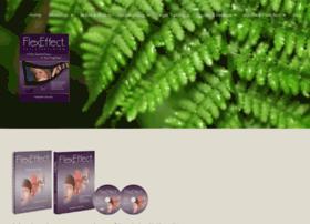 flexeffect.com