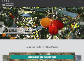 fundacionosopardo.org