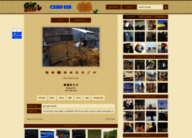 gifbin.com