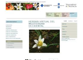 herbarivirtual.uib.es