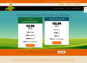 Hostnine.com