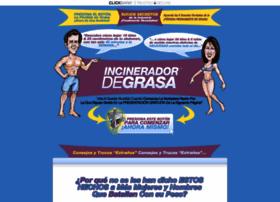 incineradordegrasa.com