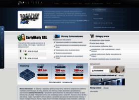 netidea.com.pl
