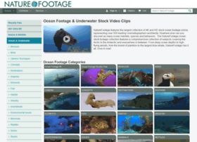 oceanfootage.com