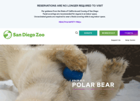 polarbearplunge.sandiegozoo.org