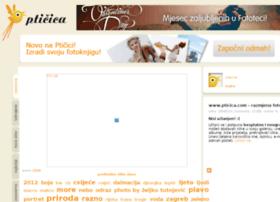 pticica.com
