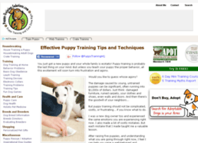 puppy-training-solutions.com