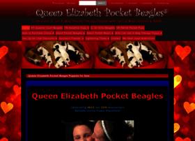 queenelizabethpocketbeagles.com