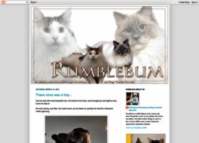 rumble-bum.blogspot.com