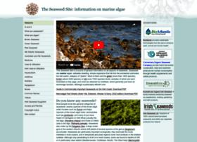 seaweed.ie