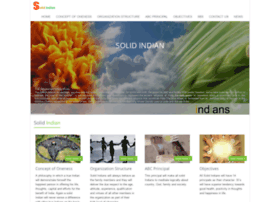 solidindian.com