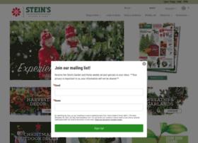 Steingg.com