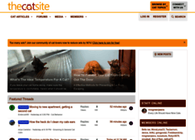 thecatsite.com