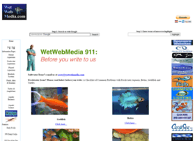 wetwebmedia.com