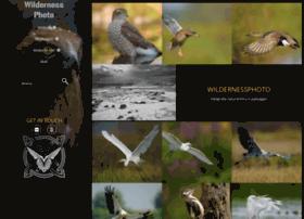 wildernessphoto.net