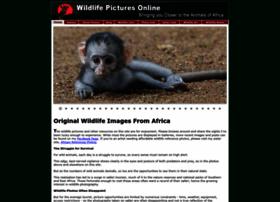 wildlife-pictures-online.com